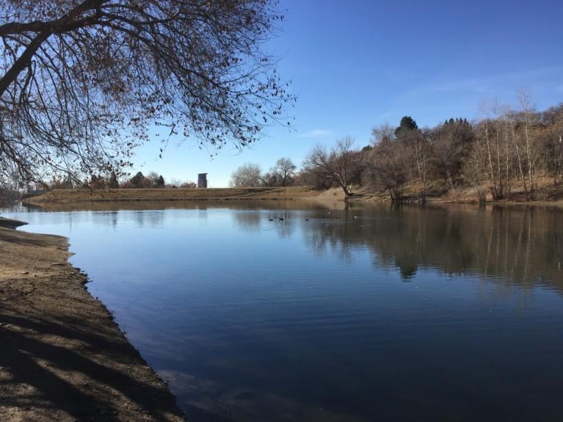 farmington-pond